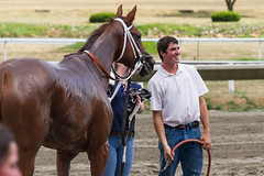 Jeb and Dylan Clarke, Trainer