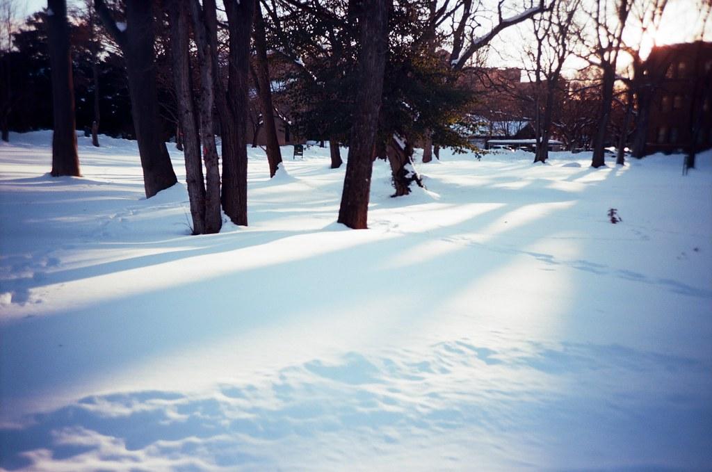 北海道大學 札幌 北海道 Sapporo, Japan / Kodak Pro Ektar / Lomo LC-A+ 在這天之前,我都是冷冷的過著每一天,多麼渴望再回到那個夏日,然後不結束的重複過著每一天。  重複的過著每一天,但時間卻不停的走下去,重複的每一天,不斷的打發時間。  Lomo LC-A+ Kodak Pro Ektar 100 8267-0029 2016-01-31 ~ 2016-02-02 Photo by Toomore