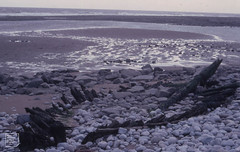 Wrecked boat on Aberthaw beach - outside lagoon. October 1982