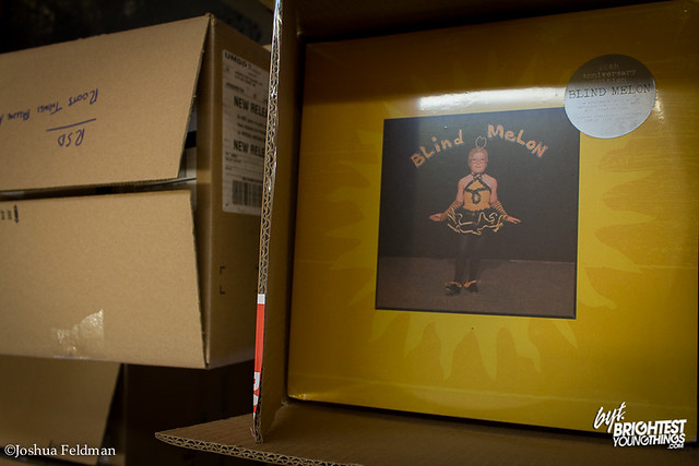 RSD Preview 2013 (14 of 48)