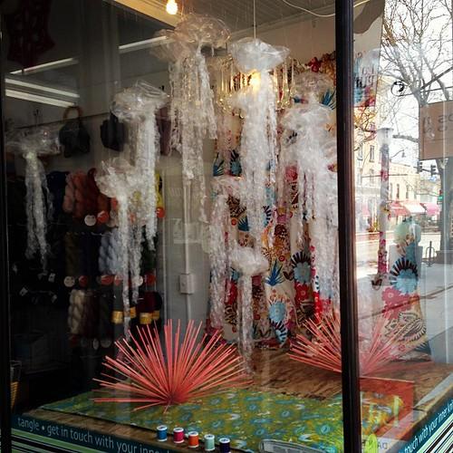 Tangle windows: jellies!
