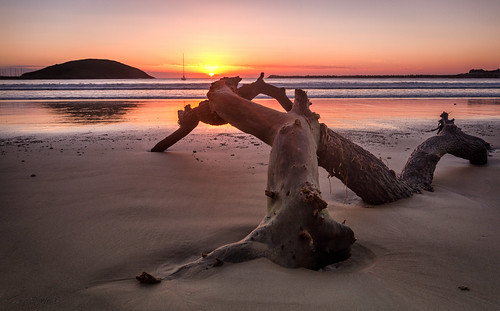 ocean sea beach water sunrise landscape island log waves 1020mm coffsharbour yabbadabbadoo canoneos7d