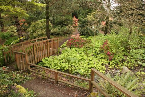 Dawley Shade Garden