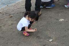 小朋友好奇的觀察手上的貝類。