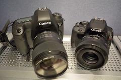 Canon EOS 6D + SIGMA 35mm f1.4 DG vs Canon EOS Kiss X7 + SIGMA 30mm f1.4 DC