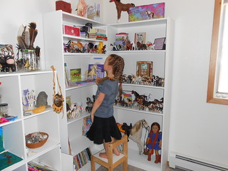 New Bookcases (2)