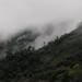 Fog - Neblina entre San Pedro Ocotepec y San Lucas Camotlán, Región Mixes, Oaxaca, Mexico por Lon&Queta