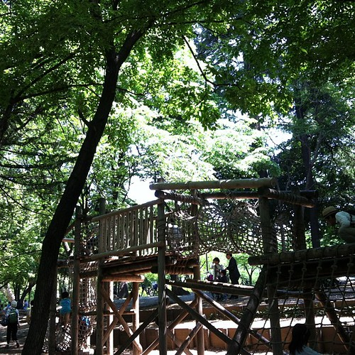 初林試の森