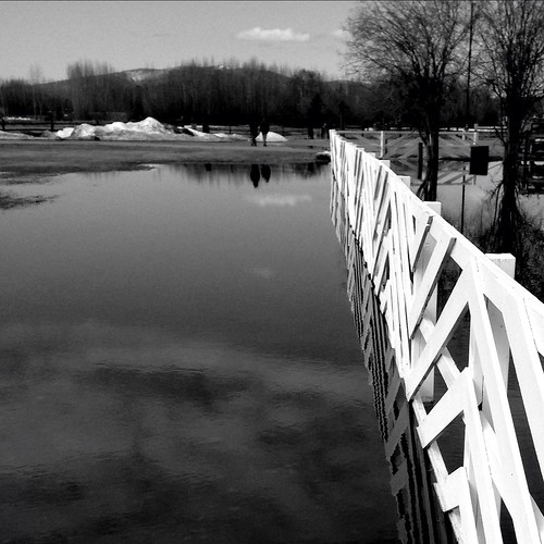 blackandwhite bw water reflections landscape creamersfield iphone5 iphoneography
