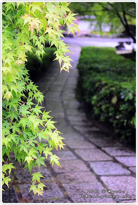 苔寺20130519-150037.jpg