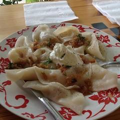 manti, food, dish, varenyky, dumpling, pierogi, jiaozi, cuisine,