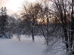 Snowmageddon, February 5-12, 2010