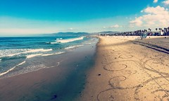 Venice beach Cali