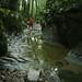 Mini canyon en amont du gour de Conche by francky25