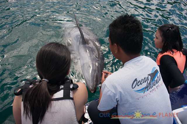 Swim Encounter with Dolphin-40.jpg