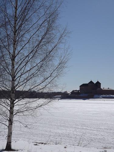 hämeenlinna hämecastle tavastehus slott häme suomi finland tavastland vanajavesi lake frozen surface castle tower keep birch tree snow linna lumi jää järvi koivu björk