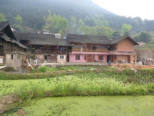 Guizhou13-Kaili-Shiqiao (4)