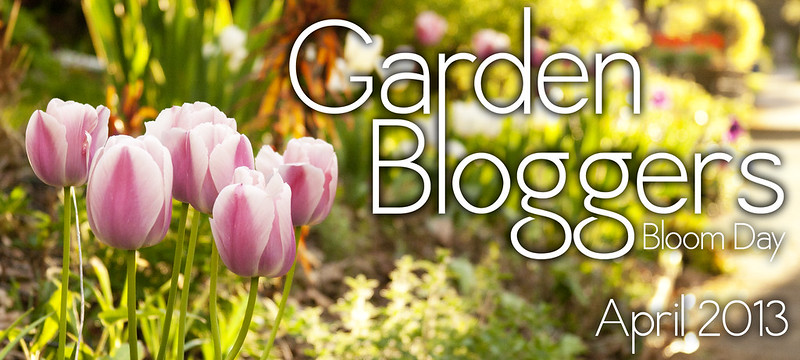 GBBD_April_2013