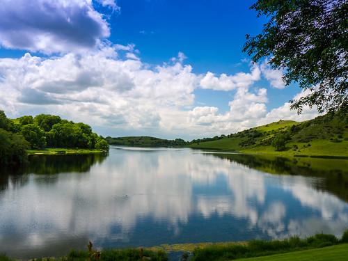 ireland lake nature landscape lough limerick gur panasonicg1