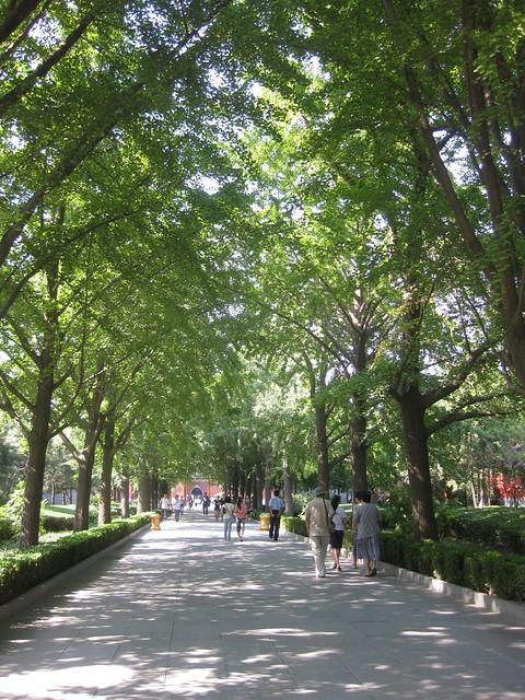beijing lama temple IMG_3196