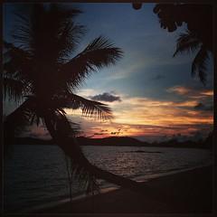 New island, same old #sunset