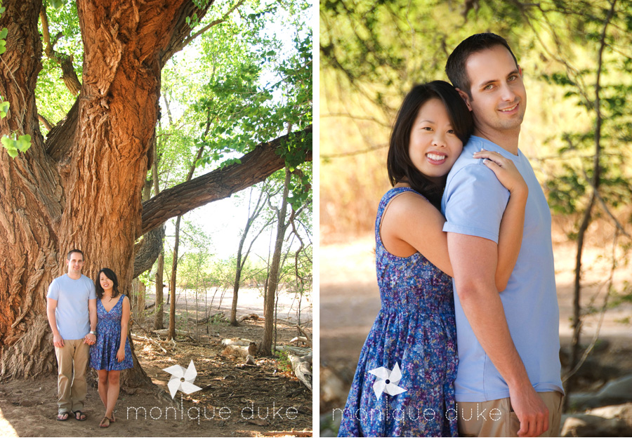 Giant Cottonwood tree engagement session