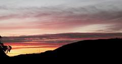 Low but vivid sunset tonight #sunset #northeastwales