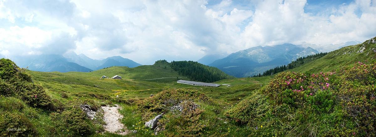 Ragoli, Trentino, Trentino-Alto Adige, Italy, 0.001 sec (1/2000), f/8.0, 2016:06:30 09:34:15+00:00, 20 mm, 10.0-20.0 mm f/4.0-5.6