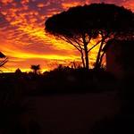 Photos des lecteurs | Un matin de janvier, Soustons