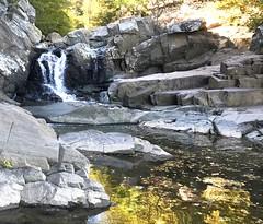 Scott's Run Nature Preserve, VA