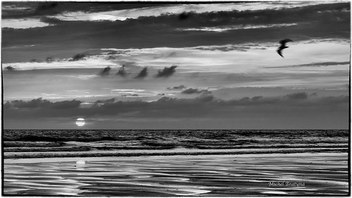sunset mer beach nature monochrome reflections nb reflet normandie plage ef28105mmf3545usm canon5dmarkii