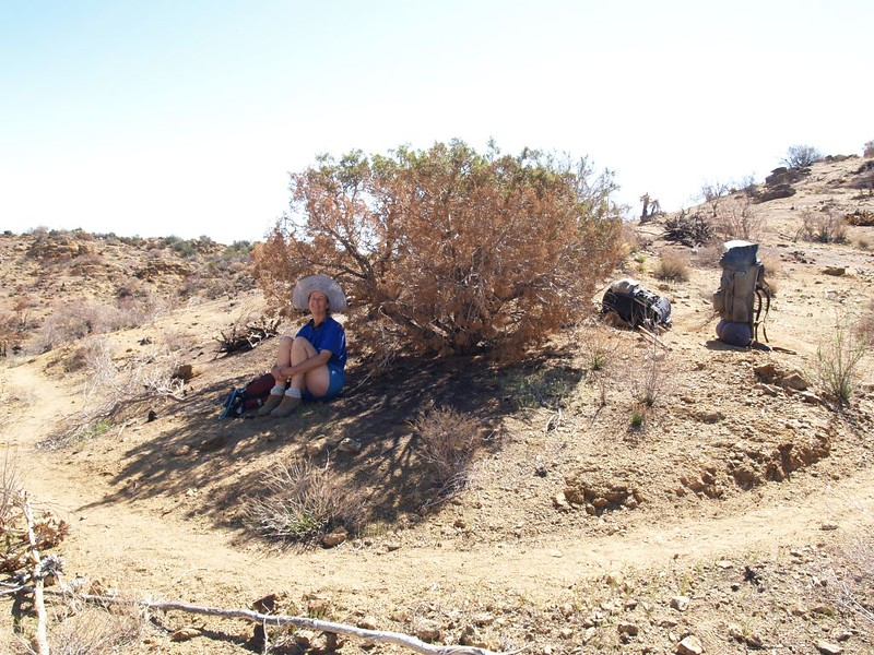 PCT San Felipe Hills - We were thankful for some rare shade under a partly burnt juniper bush