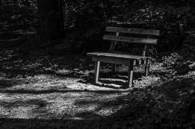 05/52c The Lonely Bench