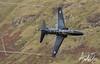Hawk passing through the Mach Loop in Wales