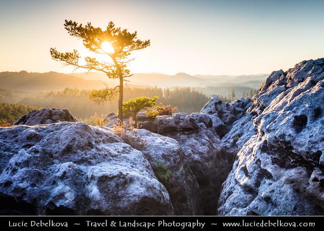 Czech Republic - Bohemian Paradise - Český ráj- UNESCO Geopark - Sokoli pusinky - Ptačí polibek - Natural rock formation called Falcon Kisses or Bird's Kiss at Summer Sunset