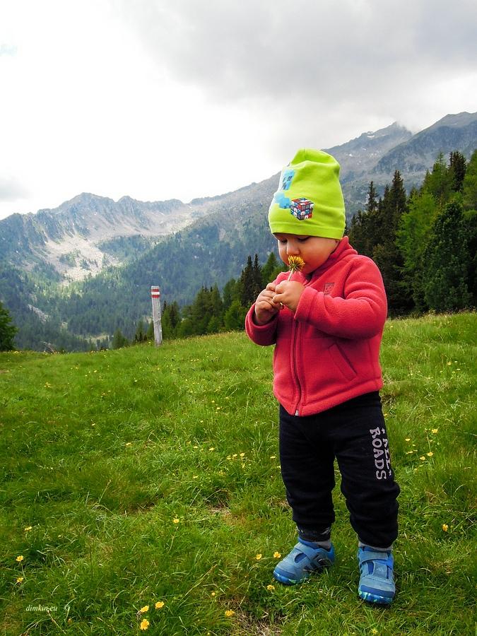 Pinzolo, Trentino, Trentino-Alto Adige, Italy, 0.002 sec (1/500), f/4.2, 2016:06:29 10:54:31+03:30, 5.5 mm