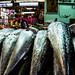 Fisheries por giulian.frisoni