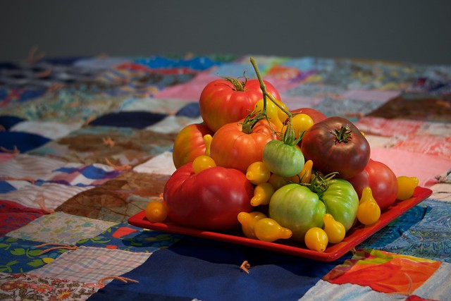 Patchwork Tomatoes