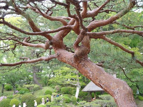 japan garden hiroshima japon shukkeien