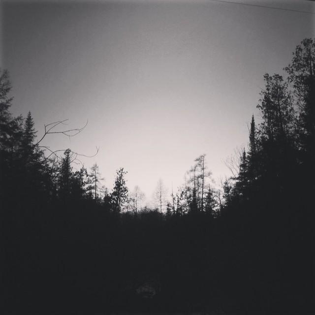 Camera Roll-1511