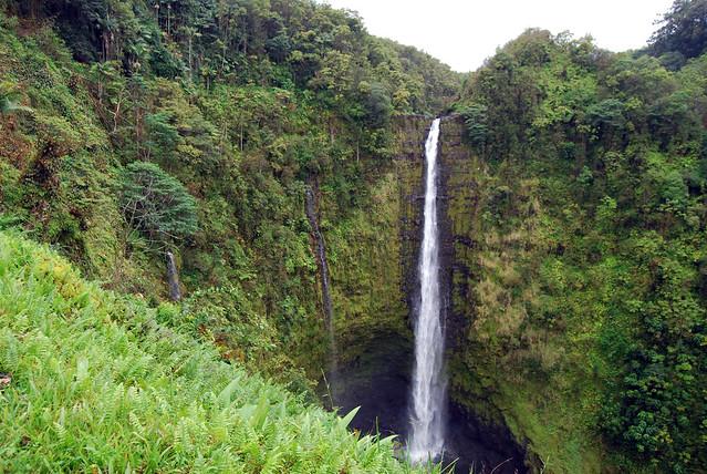 Akaka Falls Viewpoint