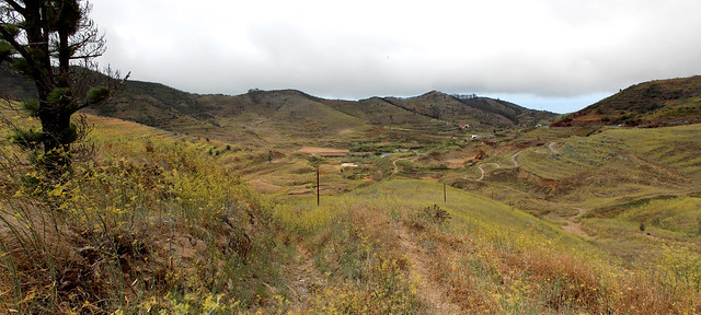 165.13.Recorrido por incendio Tenerife 2007