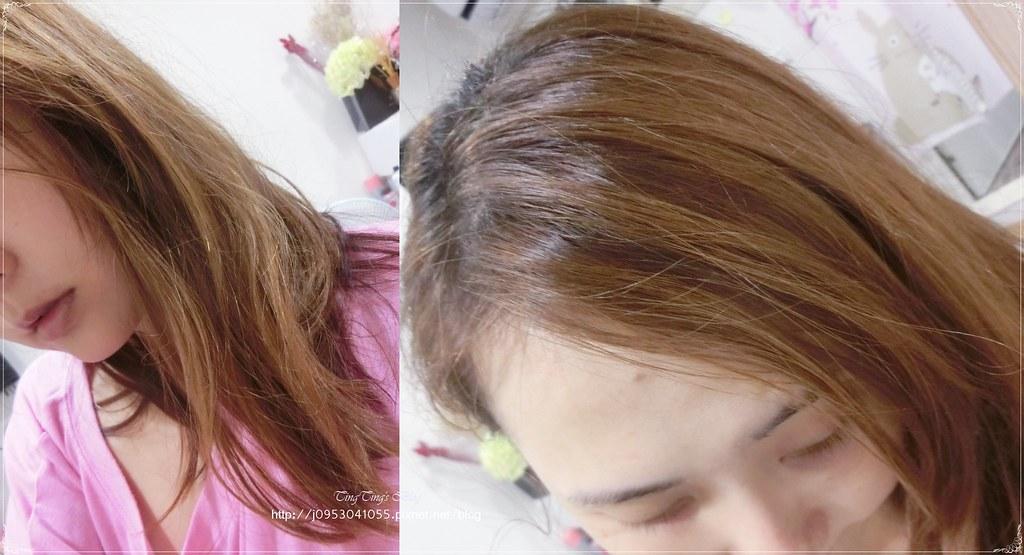Fresh Line 洗髮餅 (4)