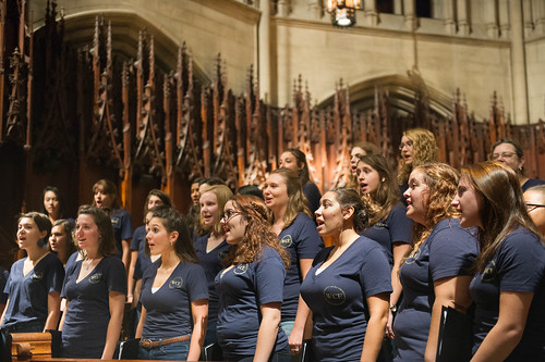 2016 - Homecoming: Sounds of Pitt Concert and Reception Gallery