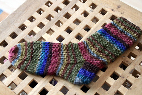 hermiones everyday socks.