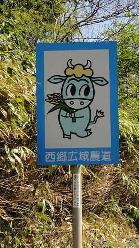 http://farm9.staticflickr.com/8269/8704627684_562c6e1c55.jpg