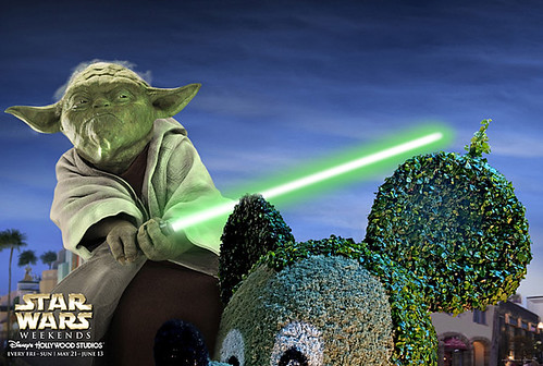 Star Wars Weekend 2013:  Yoda
