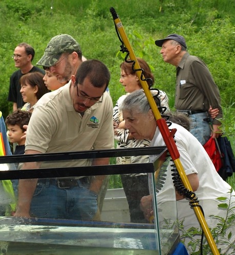 Image of DEP staff member talking about stream wildlife to a County resident.