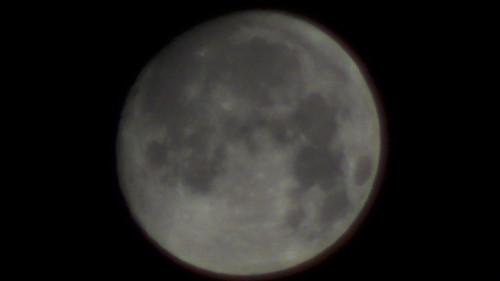 月テレコンあり