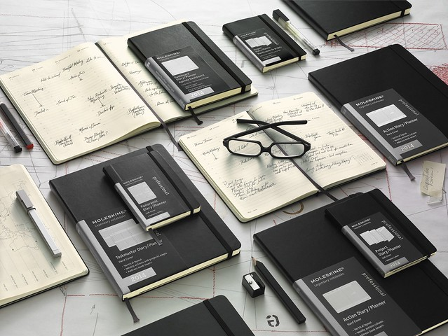 Moleskine Professional Planners 2014